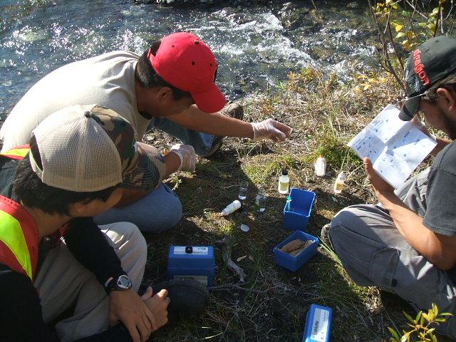 Environmental monitor training program at the Prairie Creek Mine